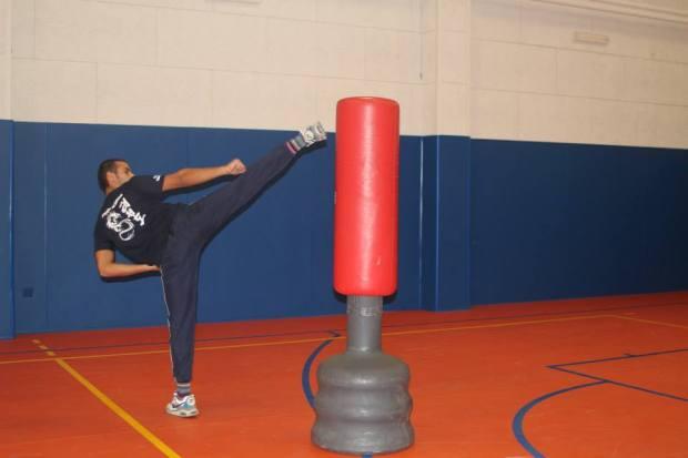 taekwondo_kick_new